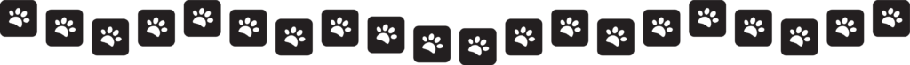 Graphical representation of the 20 partner organizations we foster out to too. showing 20 icons with pawprints.