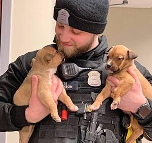 Officer Holds Puppies